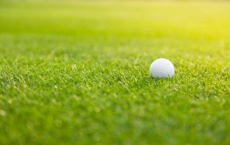 Golf ball on the green lawn, low depth of focus Archivio Fotografico