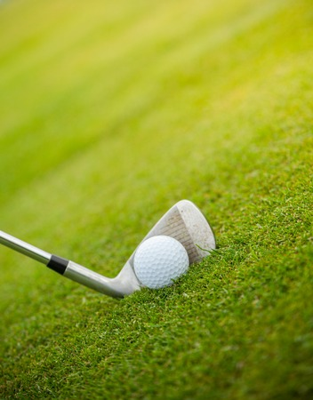 sport object: Golf club and ball in grass, low depth of focus