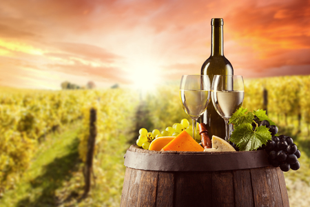 White wine bottle and glass on wooden keg with various kind of cheese. Vineyard on background Stock Photo