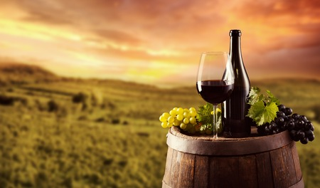 Red wine bottle and glass on wooden keg. Vineyard on background