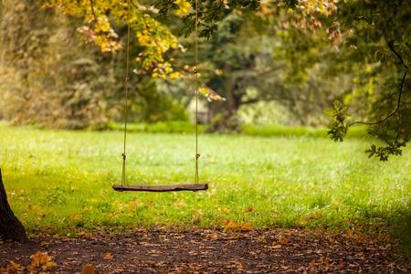 정원에 배치 빈 스윙 스톡 콘텐츠