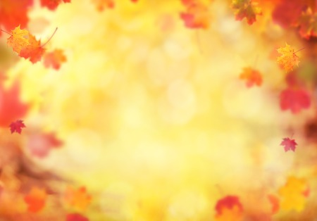 Abstract blur autumn background with falling leaves, copyspace for text
