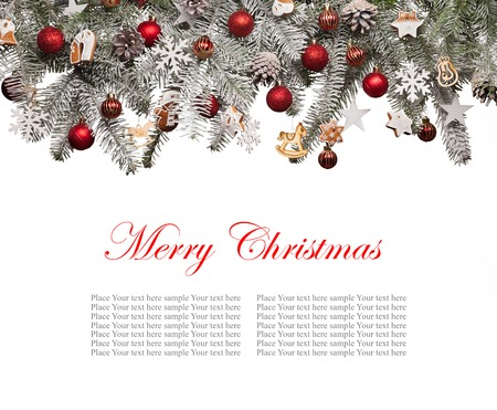 evergreen: Christmas fir tree decoration isolated on white background. Copyspace for text