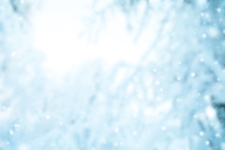subtle: abstract blur winter background with snowy branches