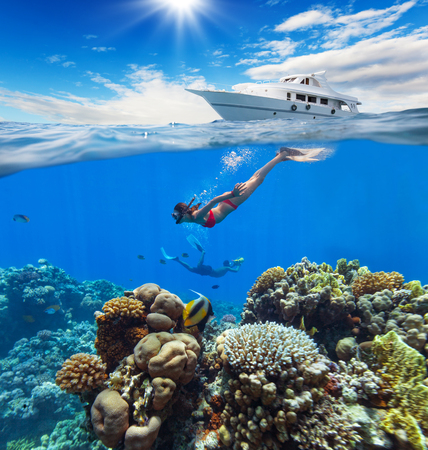 summer holidays: Female freediver floating at coral reef with beautiful tropical fish. Concept of summer holidays and underwater life. Anchoring yacht on waves. High resolution Stock Photo