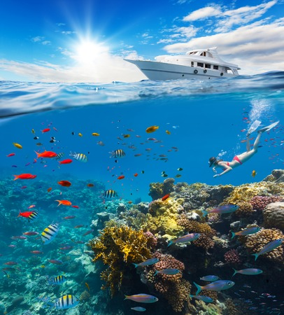 free dive: Female freediver floating at coral reef with beautiful tropical fish. Concept of summer holidays and underwater life. Anchoring yacht on waves. High resolution Stock Photo