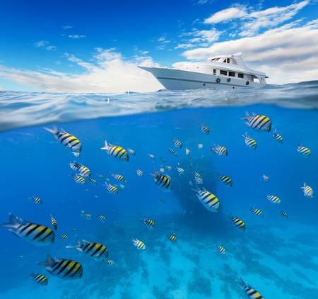 olas de mar: Vista subacuática de los arrecifes de coral con el horizonte y la superficie del agua dividida por la línea de flotación. Anclaje de yates en las ondas. concepto de vacaciones de verano. Alta resolución