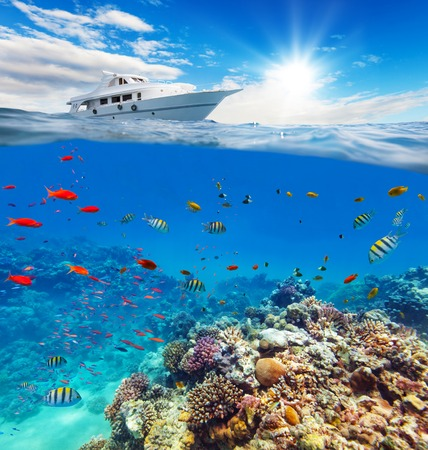 waterline: Underwater view of coral reef with horizon and water surface split by waterline. Anchoring yacht on waves. Summer holiday concept. High Resolution Stock Photo