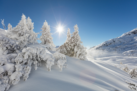 wintry landscape: Beautiful winter landscape in the mountains with blue sky and shinning sun Stock Photo