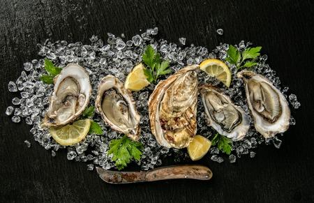 Austern serviert auf Steinplatte mit Eisgang, Messer und Zitrone.