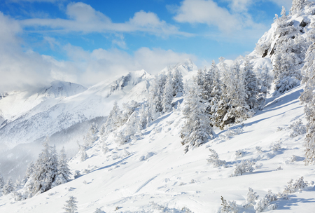 shinning: Beautiful winter landscape in the mountains with blue sky and shinning sun Stock Photo