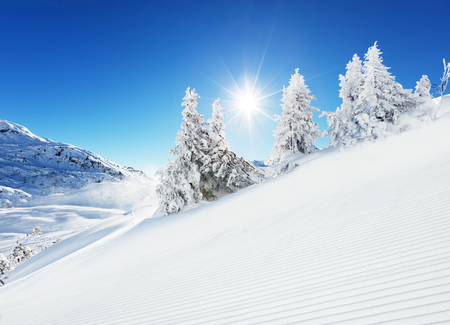 shinning: Beautiful winter slope in the mountains with blue sky and shinning sun