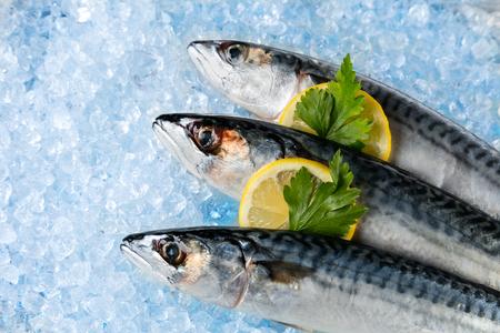 Verschillende soorten verse vis op ijs geplaatst drift