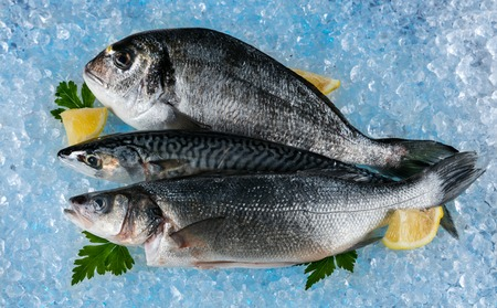 fresh fish: Various kind of fresh fish placed on ice drift