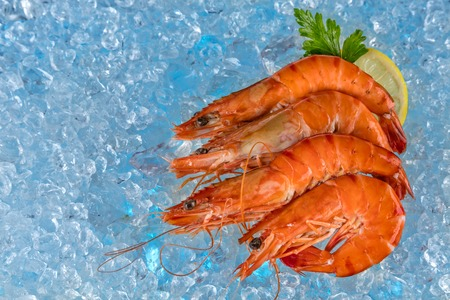 drifting ice: Group of fresh prawns placed on ice cubes