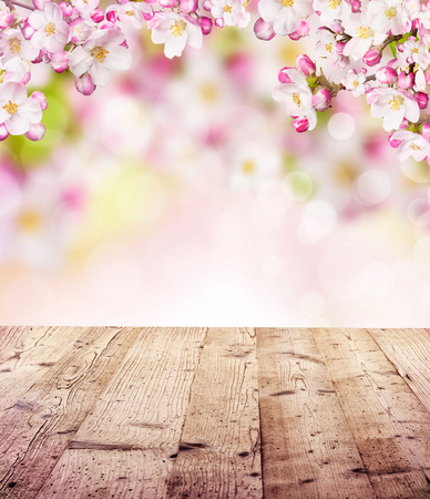 flowers bokeh: Cherry blossoms over blurred nature background and empty wooden planks. Copyspace for text