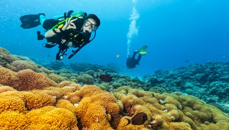 Female scuba diver showing ok sign, explore beautiful coral reef. Underwater photography in Indian ocean, Maldives Imagens