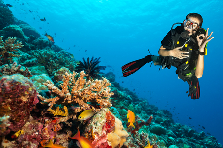 Female scuba diver showing ok sign, explore beautiful coral reef. Underwater photography in Indian ocean, Maldives Stockfoto