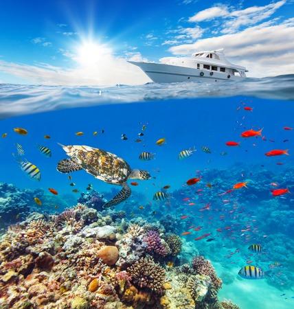 Podwodny widok rafy koralowej z horyzontu i powierzchni wody w rozbiciu na linii wodnej. Kotwiczenia jachtu na falach. Letnie wakacje koncepcji. Wysoka rozdzielczość