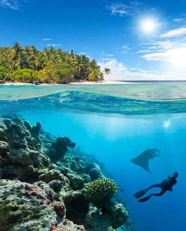 waterline: Underwater view of coral reef and scuba diver and manta ray with horizon and water surface split by waterline. Beautiful nonsettled tropical island on background. Summer holiday concept. High Resolution