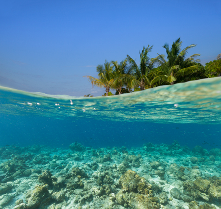 gamut: Underwater coral reef seabed and water surface with tropical island Stock Photo