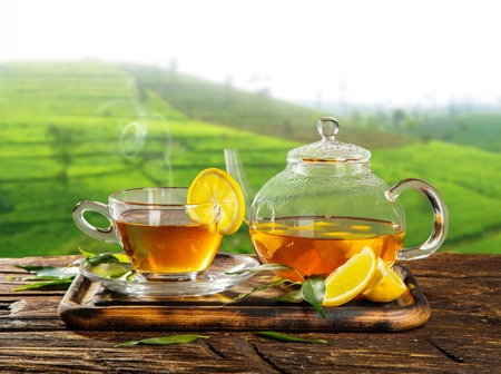 taza de té: Taza de té caliente y tetera servido en mesa de madera, plantación en el fondo