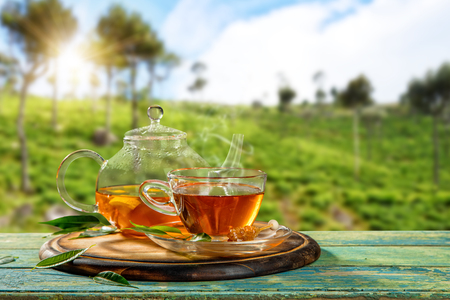 Cup of hot tea and tea-pot served on wooden table, plantation on background Imagens