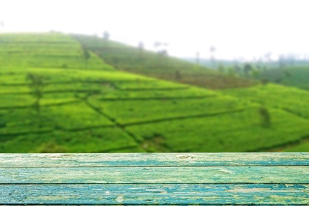 boh: Empty wooden planks with blur tea plantation on background