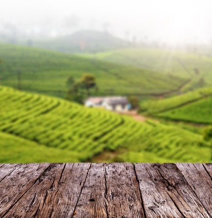 tea table: Empty wooden planks with blur tea plantation on background
