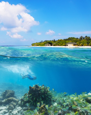 half fish: Young woman diver exploring coral reef under water surface. Tropical Maldives island resort on background, High resolution Stock Photo