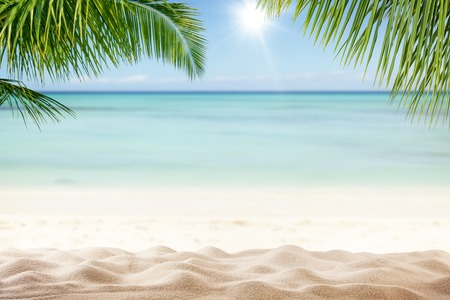 Summer sandy beach with blur ocean on background. Palm leaves on foreground Stock fotó - 55296491