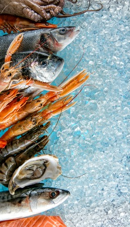 drifting ice: Various kind of fresh seafood placed on ice drift