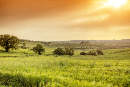 agriturismo: Beautiful morning Tuscany landscape with typical farm house, Italy Shot on HDR method