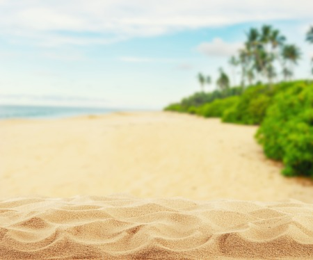 Sommer Sandstrand mit Palmen, Freiraum für die Produktplatzierung Standard-Bild - 57548408