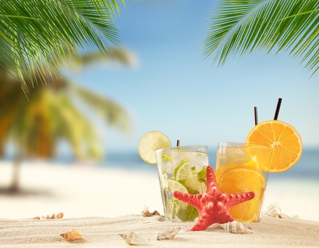 sea shell: Summer sandy beach with ice drinks. Palm leaves on foreground. Copyspace for text