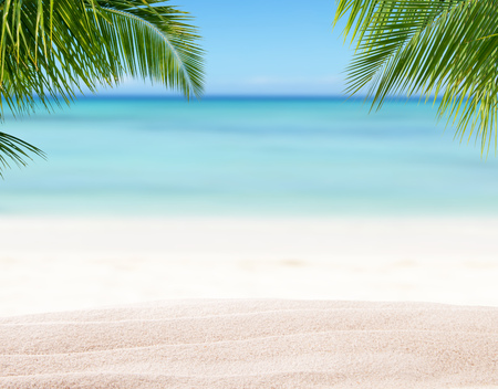 Summer sandy beach with blur ocean on background. Palm leaves on foreground