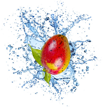 spurt: Mango in water splash and ice cubes, isolated on white background