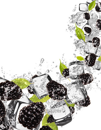 spurt: Pieces of blackberries in water splash and ice cubes, isolated on white background