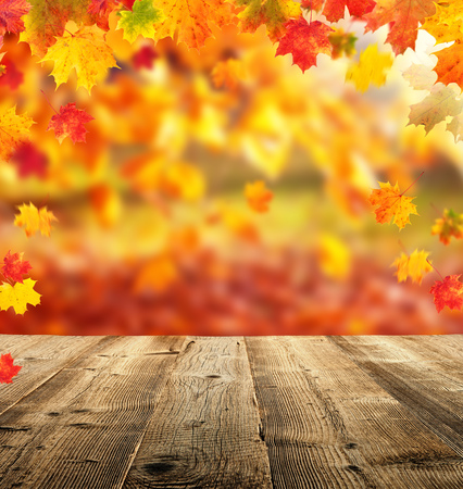 Beautiful autumn background with empty planks