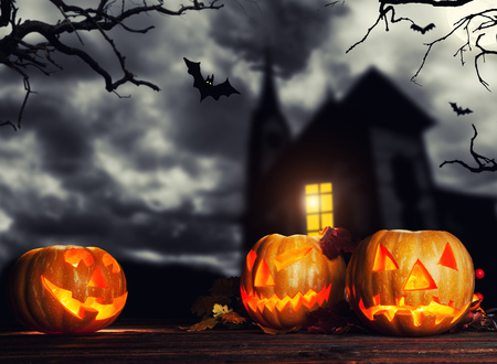 copysapce: Scary halloween pumpkins with horror background. Empty space for text