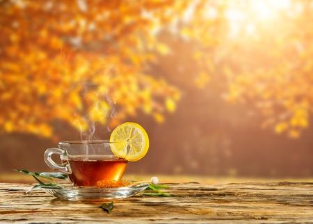 Otoño todavía la vida con la taza de té en tablones de madera y árboles de desenfoque en el fondo
