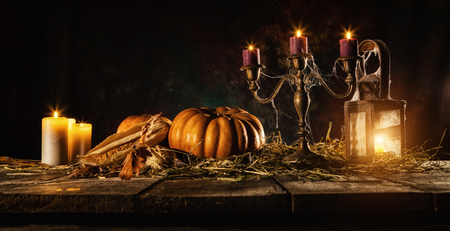 Halloween spooky still life on wooden planks. Empty space for text