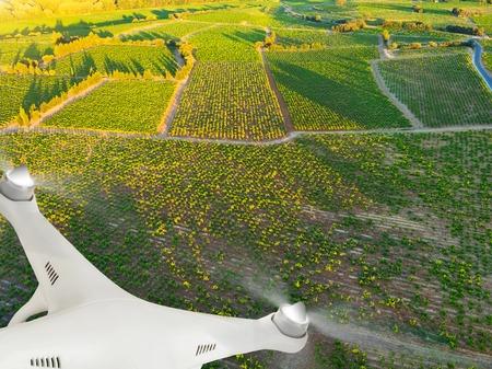 agricultura: Aviones no tripulados volando por encima de hermoso paisaje de viñedos