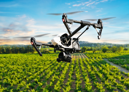 agriculture industrial: Drone flying above beautiful landscape with vineyards