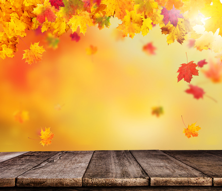 wallpaper vibrant: Abstract blur autumn background with falling leaves and empty wooden planks, ideal for product placement Stock Photo