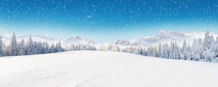 Beautiful winter panorama with fresh powder snow. Landscape with spruce trees, blue sky with sun light and high Alpine mountains on background