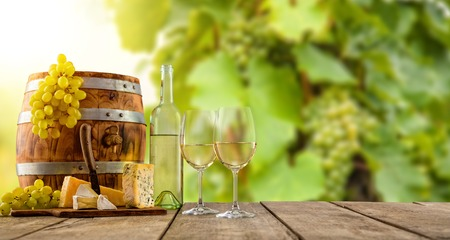 White wine glass with bottle served on wooden planks, vineyard on background, copyspace for text Stock Photo
