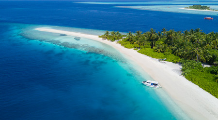 Beautiful aerial view of Maldives jetty and tropical beach with palms and white sand. Travel and vacation concept Archivio Fotografico