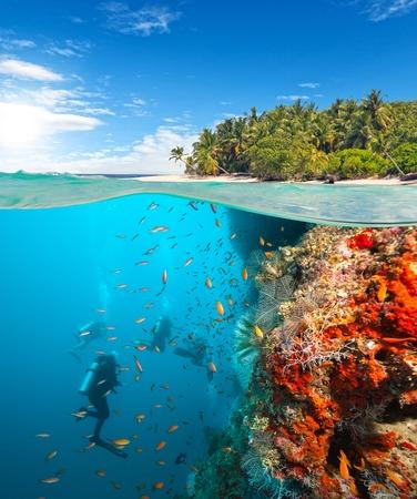 サンゴ礁を探索スキューバ ダイバーのグループ。水中スポーツや熱帯の休暇テンプレート