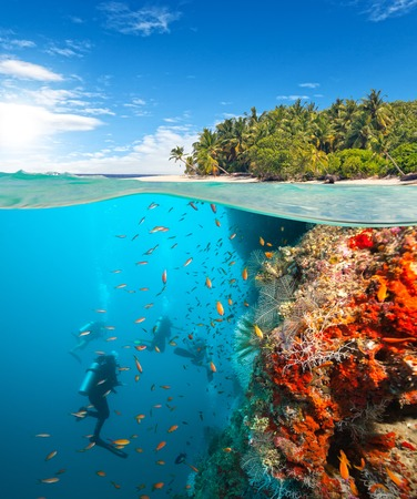 Group of scuba divers exploring coral reef. Underwater sports and tropical vacation template